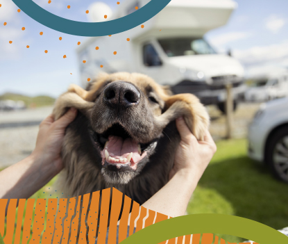 RV Beginner? Here are some tips to get you smiling and on the road for summer fun! image